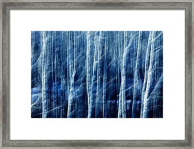 Aspen Magic Framed Print by Todd Klassy