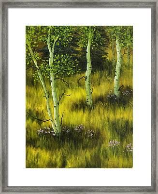 Aspen Meadow Framed Print by Rick Bainbridge