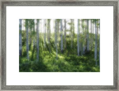 Framed Print featuring the photograph Aspen Morning 2 by Marie Leslie