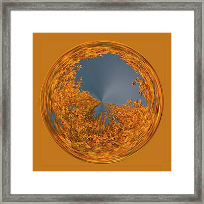 Framed Print featuring the photograph Aspen Orb by Bill Barber