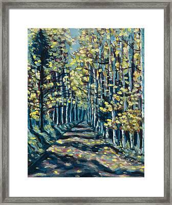 Aspen Path Framed Print by Steve Lawton