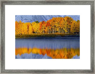 Framed Print featuring the photograph Aspen Reflection by Wesley Aston