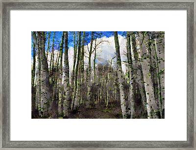 Aspen Standing Framed Print by Jeff Kolker