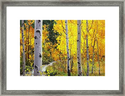 Aspen Stream Framed Print by Gary Kim