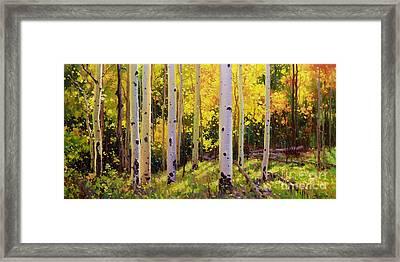 Aspen Symphony Framed Print by Gary Kim