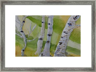 Framed Print featuring the painting Aspen Trunks by Beverley Harper Tinsley