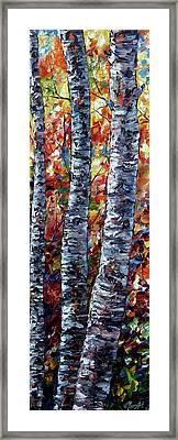 Aspen Up 2 Framed Print