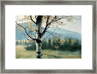 Aspen Valley Framed Print