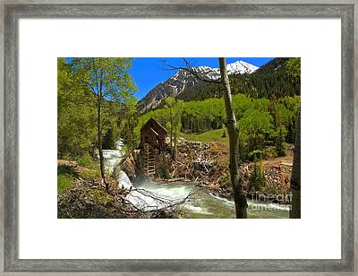 Aspens Around The Crystal Mill Framed Print by Adam Jewell