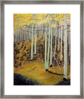 Aspens Framed Print by Bill Czappa
