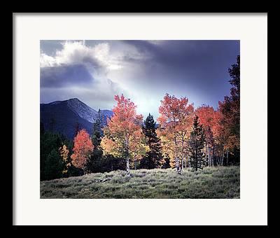 Phot Framed Prints