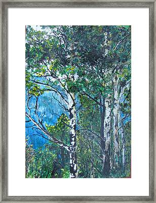 Aspens Framed Print by Kenny King