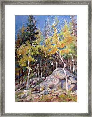 Aspens Near Bear Lake Framed Print by Carole Haslock