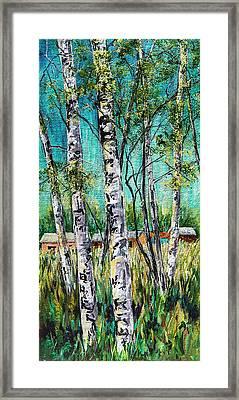 Aspens On The Farm Framed Print