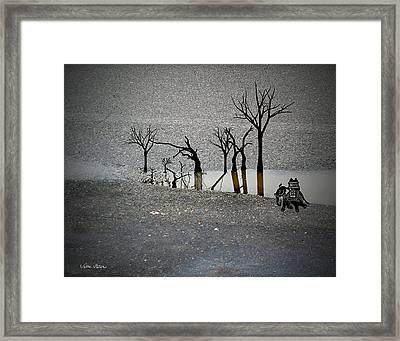 Asphalt Oasis Framed Print by Sabine Stetson