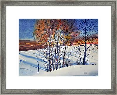 Aspin In The Snow Framed Print by Donald Maier