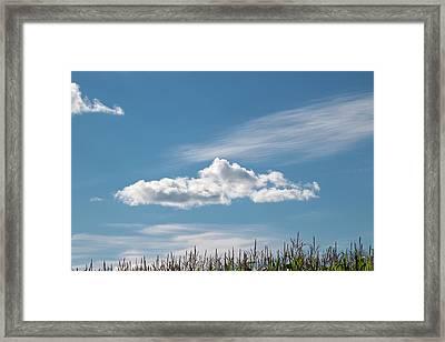 Aspire - Framed Print