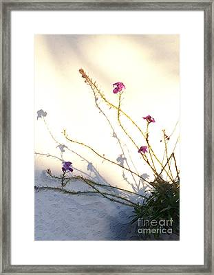 Aspire Framed Print