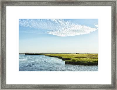 Assateague Island Framed Print
