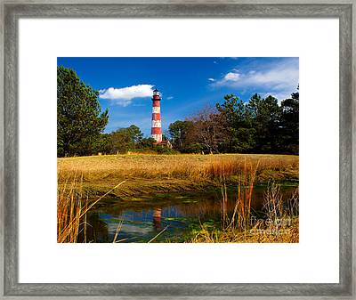 Assateague Lighthouse Reflection Framed Print by Nick Zelinsky