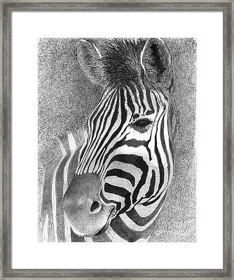 Assiduous Framed Print by Phyllis Howard
