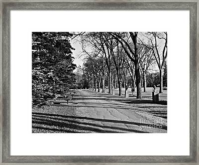 Framed Print featuring the photograph Assiniboine Park by Cendrine Marrouat