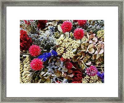 Assortment Of Dried Flowers Framed Print by Susan Savad