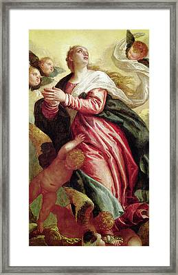 Assumption Of The Virgin Framed Print by Veronese