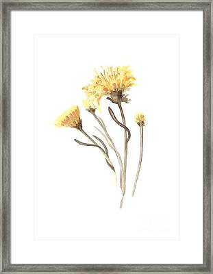 Aster Flower Watercolor Art Print Painting Framed Print