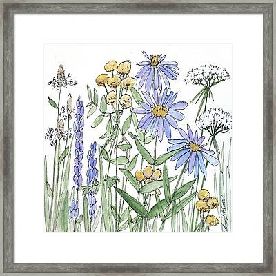 Asters And Wildflowers Framed Print