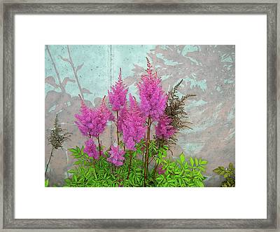 Framed Print featuring the photograph Astilbe And Shadows by Randy Rosenberger