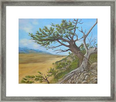 At A Tangent Framed Print by Merle Blair
