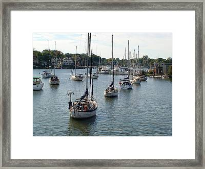 Framed Print featuring the photograph At Anchor by Charles Kraus