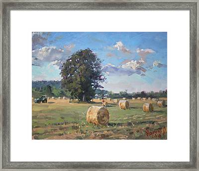 At Cathy's Farm Georgetown Framed Print