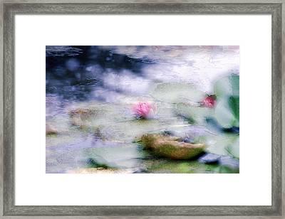 At Claude Monet's Water Garden 12 Framed Print