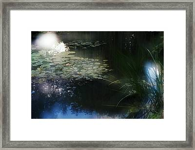 Framed Print featuring the photograph At Claude Monet's Water Garden 3 by Dubi Roman