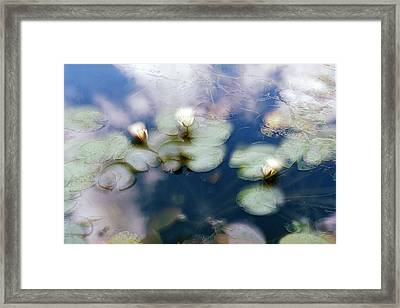 Framed Print featuring the photograph At Claude Monet's Water Garden 4 by Dubi Roman