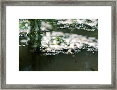Framed Print featuring the photograph At Claude Monet's Water Garden 5 by Dubi Roman