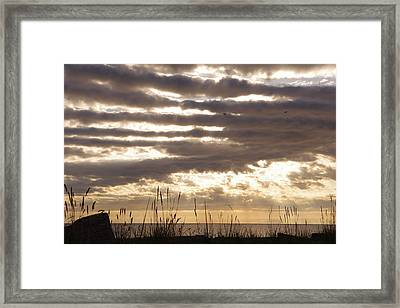 At Dusk West Coast Bc Canada Framed Print by Ming Yeung