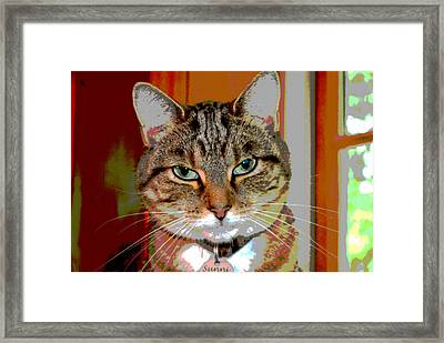 At Ease Framed Print by Dianne Cowen