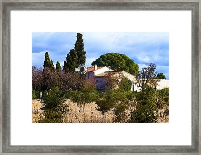 At Felix Framed Print by L KervaL