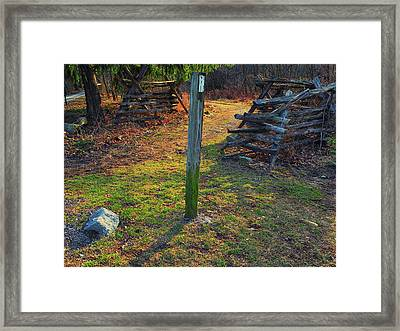 At From Reno Monument Road Framed Print by Raymond Salani III