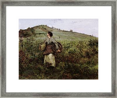 At Harvest Time Framed Print