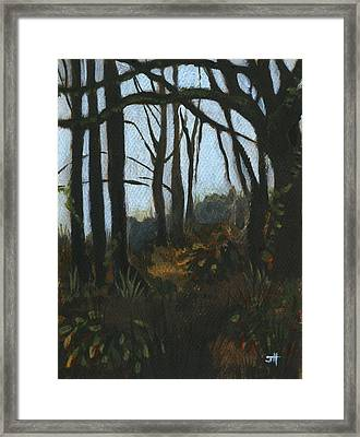 At Home With The Trees Framed Print