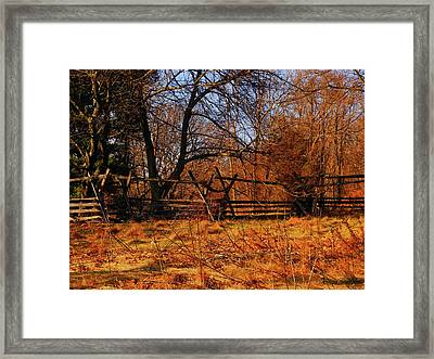 At In Maryland Fence Framed Print by Raymond Salani III