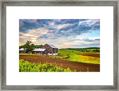 At One With The Land Framed Print by Steve Harrington