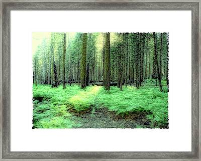At Peace Framed Print by Michael Cleere