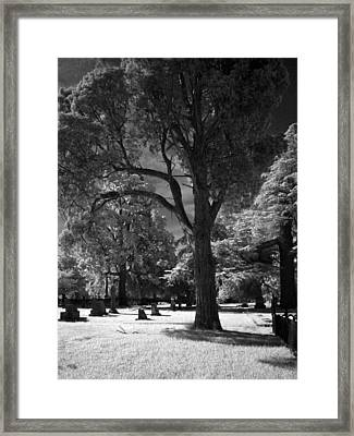 At Peace Framed Print by Michele Caporaso