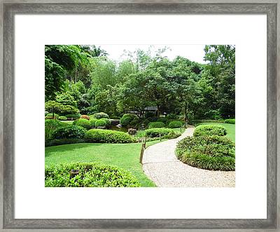 At Peace With Nature  Framed Print