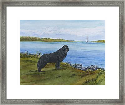 At Seneca Lake Framed Print